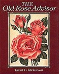'The Old Rose Advisor'  photo