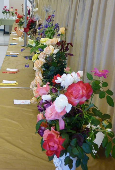 'Desert Rose Society Annual Fall Show'  photo